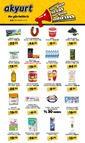 Akyurt Süpermarket 01 - 14 Şubat 2019 Kampanya Broşürü! Sayfa 1
