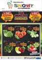 Snowy Market 21 - 22 Mart 2019 Kampanya Broşürü! Sayfa 1
