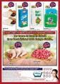 Rota Market 07 - 11 Kasım 2019 Esenler, Okmeydanı, Güngören, Yüzyıl, Sultangazi, Üsküdar, Malta ve Mevlana Mağazalarına Özel Kampanya Broşürü! Sayfa 2