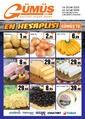 Gümüş Ekomar Market 16 - 22 Ocak 2020 Kampanya Broşürü! Sayfa 1