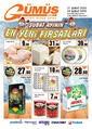 Gümüş Ekomar Market 21 - 29 Şubat 2020 Kampanya Broşürü! Sayfa 1