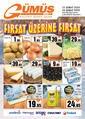Gümüş Ekomar Market 12 - 20 Şubat 2020 Kampanya Broşürü! Sayfa 1