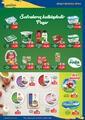 Acem Market 16 - 30 Nisan 2020 Kampanya Broşürü! Sayfa 5 Önizlemesi