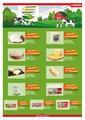Groseri 01 - 30 Haziran 2020 Kampanya Broşürü! Sayfa 13 Önizlemesi