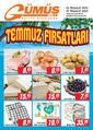 Gümüş Ekomar Market 02 - 07 Temmuz 2020 Kampanya Broşürü! Sayfa 1
