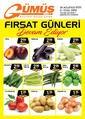 Gümüş Ekomar Market 28 Ağustos - 01 Eylül 2020 Kampanya Broşürü! Sayfa 1