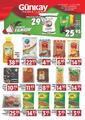 Günkay Market 28 Ağustos - 02 Eylül 2020 Kampanya Broşürü! Sayfa 1