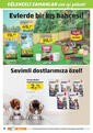 5M Migros 29 Ekim - 11 Kasım 2020 Kampanya Broşürü:Hem İndirimli Hem Money Hediyeli Sayfa 12 Önizlemesi