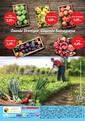 Gürmar Süpermarket 16 - 31 Ekim 2020 Kampanya Broşürü! Sayfa 16 Önizlemesi