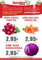 Beşler Market 12 - 14 Mart 2021 Manav Broşürü! Sayfa 1
