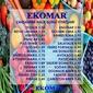 Ege Ekomar Market 24 Mart 2021 Halk Günü Fırsatları Sayfa 1 Önizlemesi