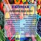Ege Ekomar Market 31 Mart 2021 Manav Fırsatları Sayfa 1