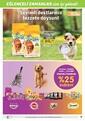 5M Migros 29 Nisan - 19 Mayıs 2021 Kampanya Broşürü: Annelerimize Özel Sayfa 21 Önizlemesi