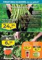 Migros 29 Nisan - 19 Mayıs 2021 Kampanya Broşürü! Sayfa 28 Önizlemesi