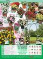 Bauhaus 08 - 21 Mayıs 2021 Kampanya Broşürü! Sayfa 40 Önizlemesi