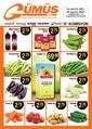 Gümüş Ekomar Market 24 - 30 Mayıs 2021 Kampanya Broşürü! Sayfa 1