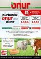 Onur Market 15 - 28 Temmuz 2021 Bursa Bölge Kampanya Broşürü! Sayfa 1