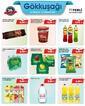 Gökkuşağı Market 30 Temmuz - 12 Ağustos 2021 Kampanya Broşürü! Sayfa 7 Önizlemesi
