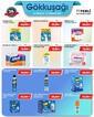 Gökkuşağı Market 30 Temmuz - 12 Ağustos 2021 Kampanya Broşürü! Sayfa 10 Önizlemesi